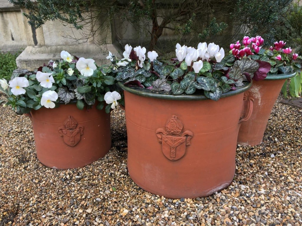 Plant pots bearing the Archbishop of Canterbury's Coat of Arms