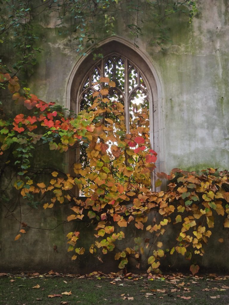 St Dunstan in the East - Look Up London