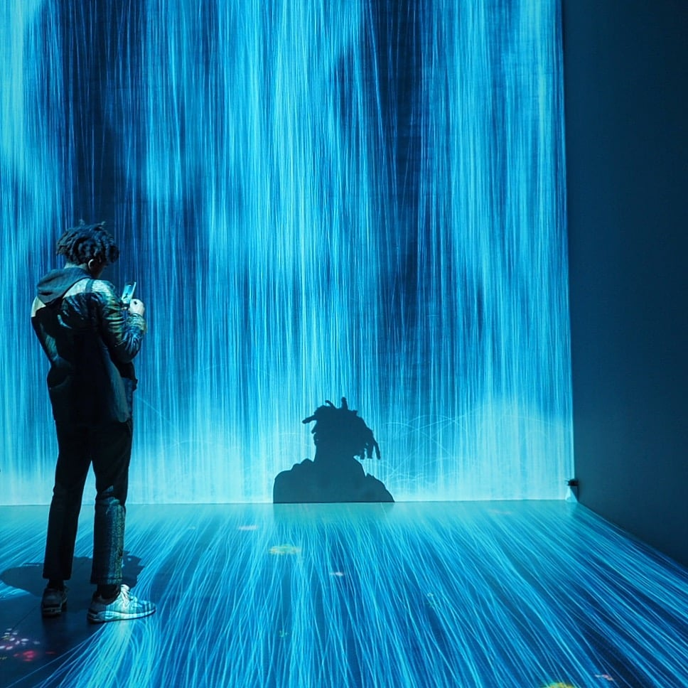 teamlab at Pace Gallery