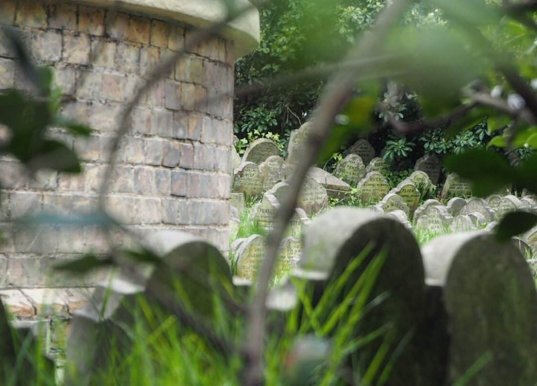 London Secret Pet Cemetery