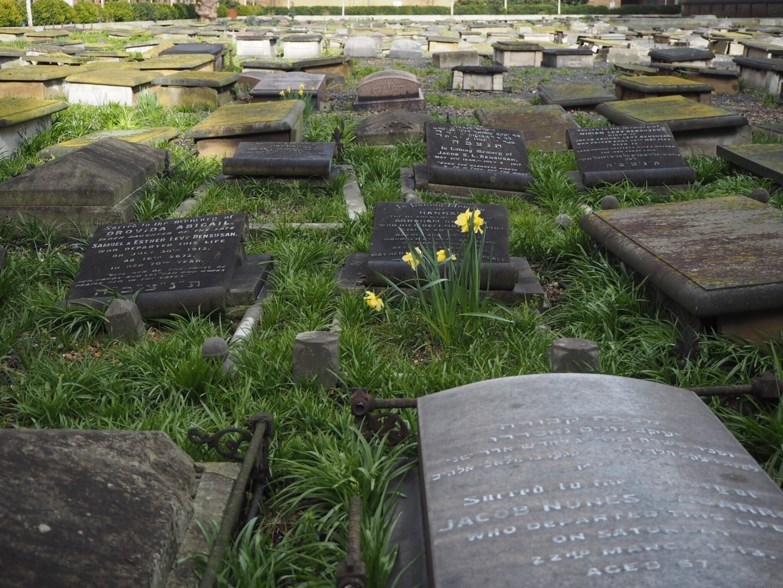 Novo Cemetery
