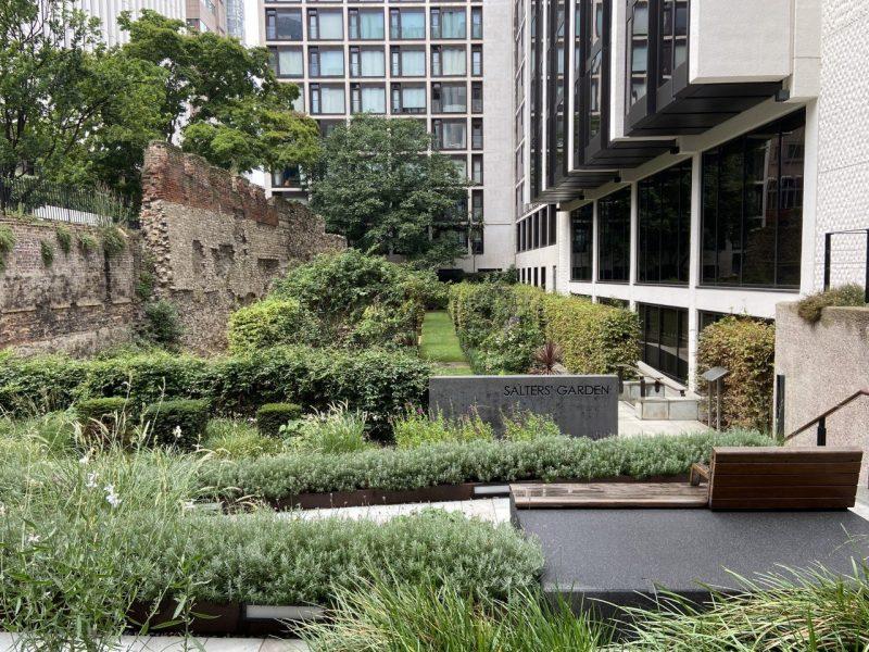 Salters' Garden Look Up London